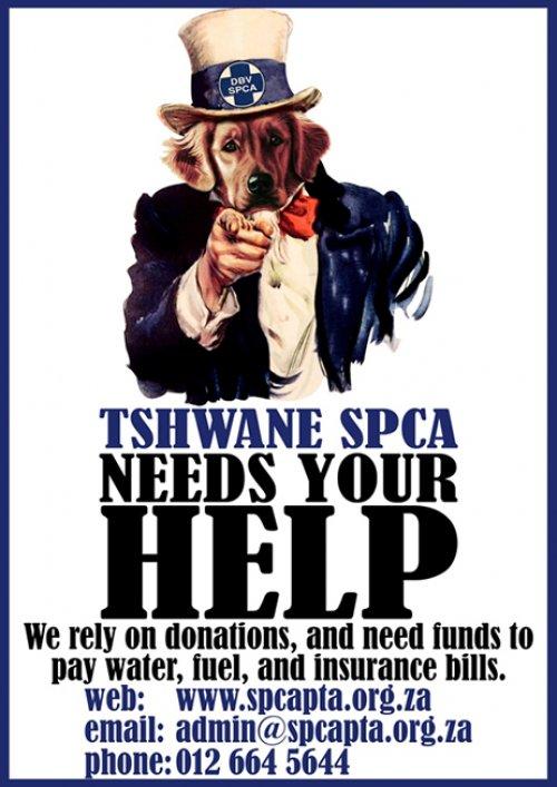 SPCA - We need you